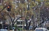 تشکیل ۱۶۵ سایت برفروبی برای روزهای برفی پایتخت