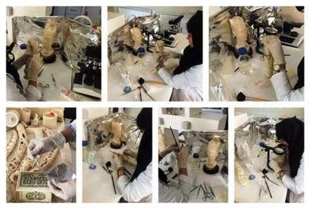 مجسمههای عاجی سردیس و نیمتنه آفریقایی در سعدآباد مرمت شد