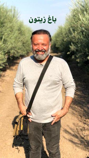 علی صالحی در باغ زیتون + عکس
