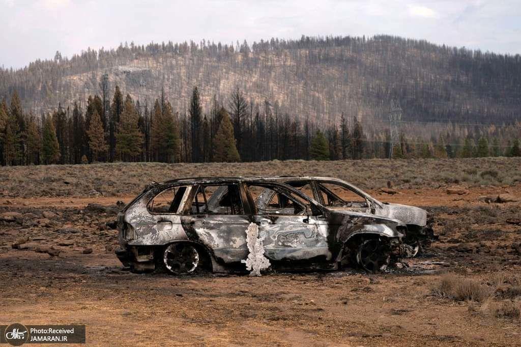 اتومبیل های تخریب شده در اثر آتش سوزی در آمریکا +عکس