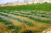صندوقهای بیمه کشاورزی برای حل مشکلات کشاورزان کمک کنند