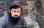 کشته شدن سرکرده ارشد القاعده در افغانستان