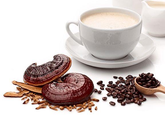 قیمت و خرید قهوه گانودرما - فروش عمده و تکی قهوه گانودرما