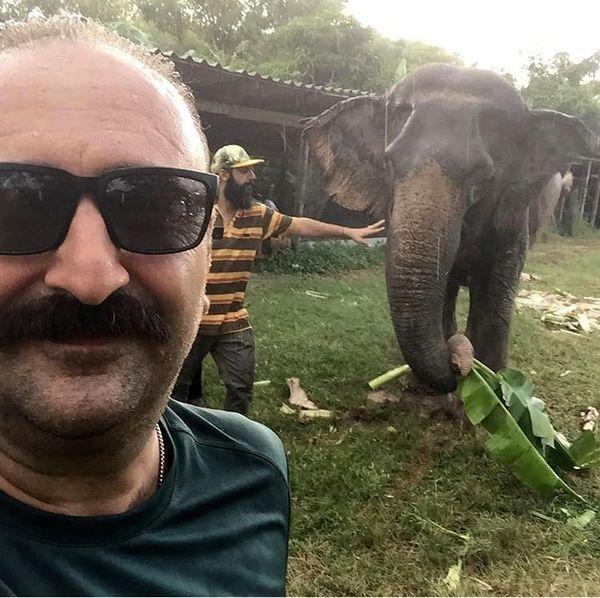 سلفی بهبود فریبا با فیل + عکس