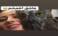 حیوان خانگی اخمالو نفیسه روشن + عکس