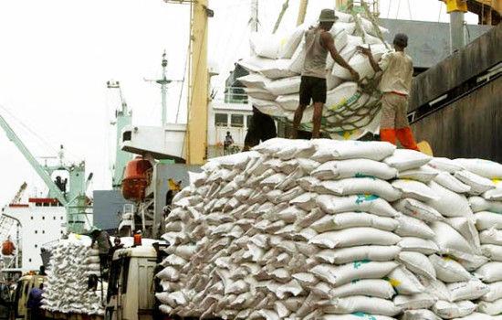 ممنوعیت فصلی واردات برنج
