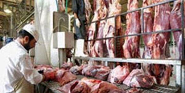 توزیع گوشت منجمد طرح تنظیم بازار در میادین شهرستان
