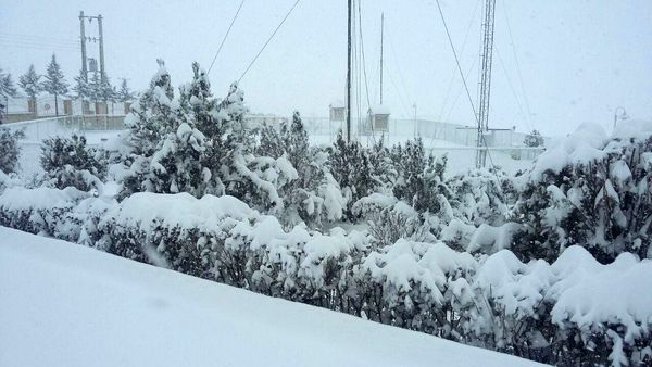 آماده باش برای مقابله با خسارات احتمالی برف