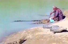 زندگی مسالمتآمیز یک مرد با تمساحها!+ فیلم