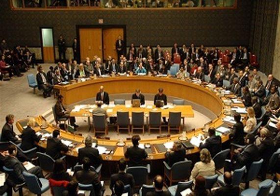 ابراز نگرانی شورای امنیت از روابط بوکو حرام با داعش