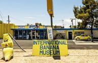 موزه، موز کالیفرنیا، یکی از خندهدارترین موزههای جهان
