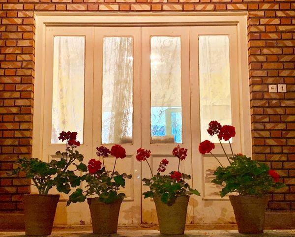 دلتنگی مهراوه شریفی نیا برای خانه های شیرین مادربزرگ ها