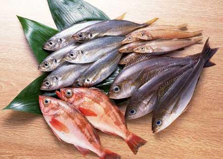 فواید مصرف ماهی با استخوان