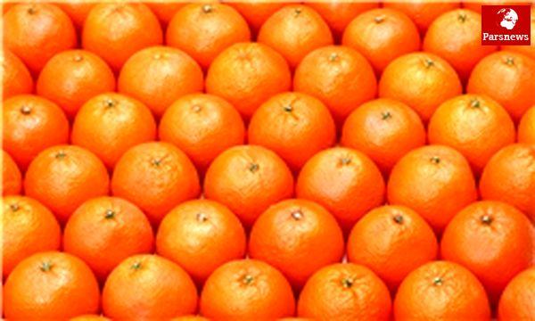 پرتقال گران می شود