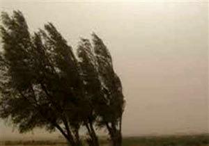 توفان تهران را درنوردید