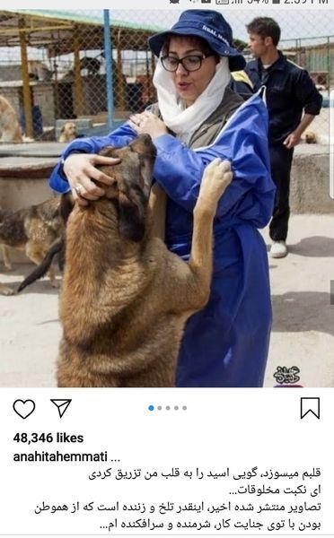 عکس آناهیتا همتی با سگ های ولگرد