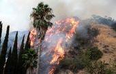 لسآنجلس آتش گرفت! + تصاویر