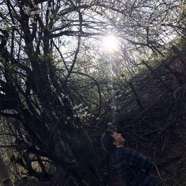 گردش مجید اخشابی در جنگلی رویایی+عکس