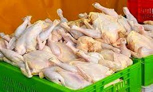 افزایش قیمت مرغ هنوز تصویب نشده است