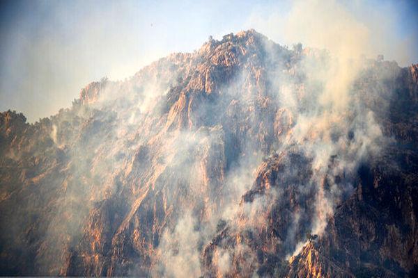 هیچ فردی در رابطه با آتش سوزی جنگلهای خائیز دستگیر نشده است