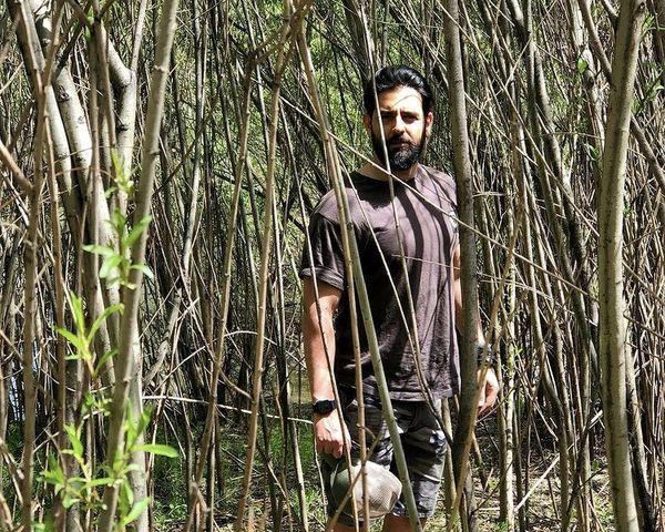 امیرحسین آرمان در میان انبوهی از درختان + عکس