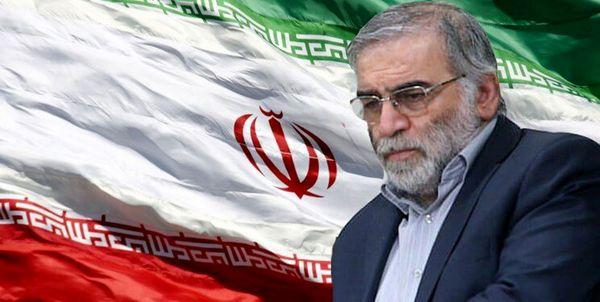 حداقل سیلی ایران به عاملان ترور فخریزاده، توقف داوطلبانه پروتکل الحاقی است