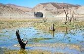 حجم آبهای سطحی کشور 35 درصد کاهش یافت