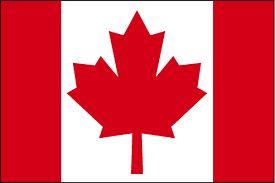 کانادا در حال بازبینی صادرات سلاح به عربستان است