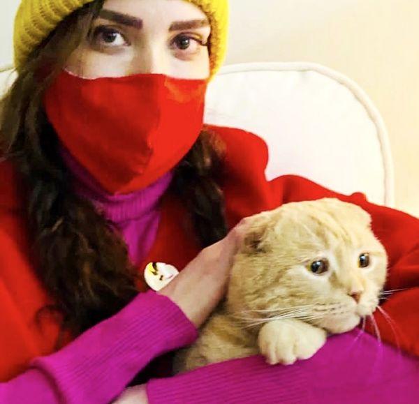گربه بامزه بهنوش طباطبایی + عکس