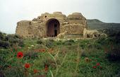 کاخ اردشیر بابکان در روزهای حساس باقیمانده به ثبت جهانی