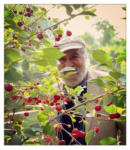 داریوش ارجمند در باغ گیلاس + عکس