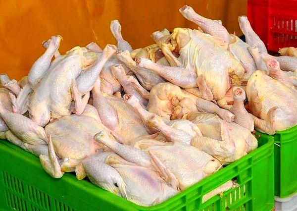 علت افزایش قیمت مرغ