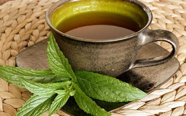 با این گیاه ریه هایتان را ضدعفونی کنید