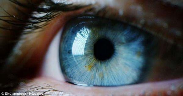 طراحی روشی جدید برای تشخیص بیماریهای چشمی