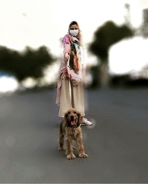 سگ بامزه ماهور الوند + عکس