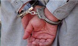 دستگیری 389 نفر از اراذل و اوباش/ انسداد تارنماهای مروج اوباشگری