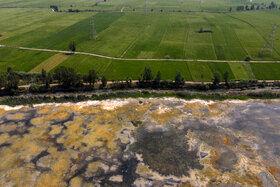 آبهای آب بندان لپو زاغمرز جهت مصارف کشاورزی به طور کامل تخلیه شده است.