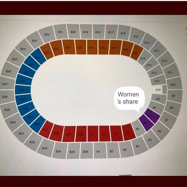 تهمینه میلانی به دنبال حق زنان در استادیوم