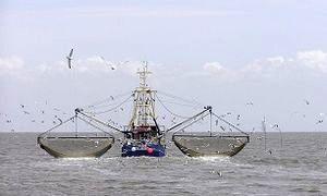 تکذیب ماهیگیری کشتی های چینی در آبهای ایران