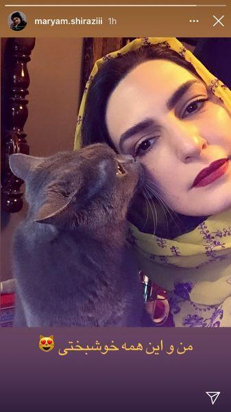 گربه خانگی خانم بازیگر + عکس