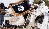 آمریکا درصدد استقرار داعش در همسایگی شرق ایران