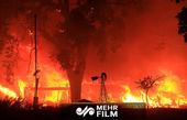 شمار قربانیان آتشسوزی در کالیفرنیا به ۵۰ نفر رسید