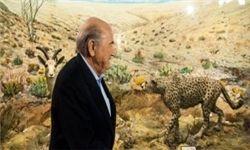 یوزپلنگ ایرانی بر روی لباس تیم ملی ایران