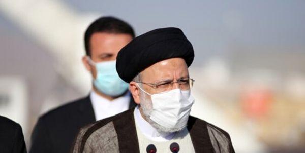 رئیس جمهور : دست دلالان نهادههای دامی قطع میشود
