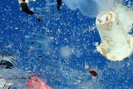تلاش چین برای ساخت پلاستیکهای قابل حل در دریا و اقیانوس
