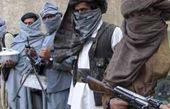 فرمانده ارشد طالبان در پکتیا کشته شد