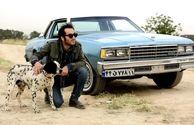 عکس بازیگر سریال برادر جان با سگ