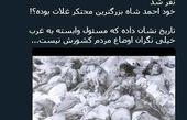 توئیتر:مسئولین غربگرا عامل کشته شدن 9 میلیون ایرانی! +عکس