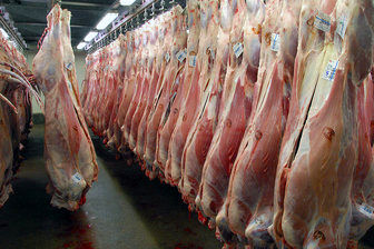 قیمت گوشت لحظهای در نوسان است