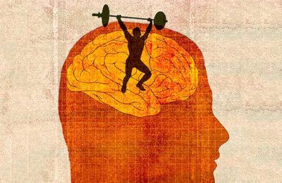 انعطاف پذیری عصبی و کارایی آن در زندگی